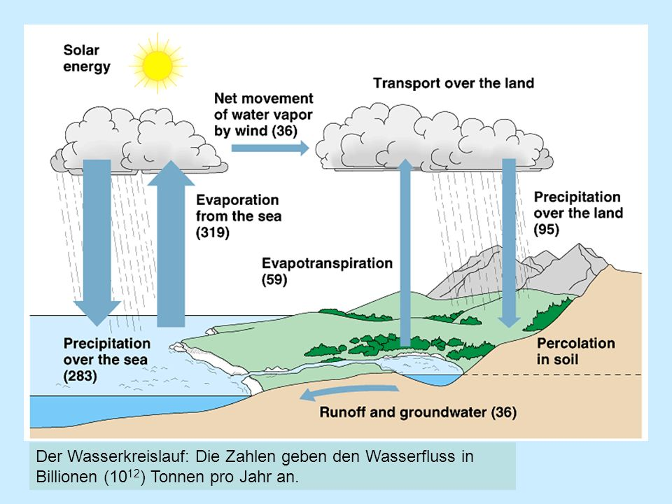 Der Wasserkreislauf: Die Zahlen geben den Wasserfluss in Billionen (1012) Tonnen pro Jahr an.