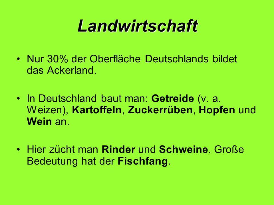 Landwirtschaft Nur 30% der Oberfläche Deutschlands bildet das Ackerland.