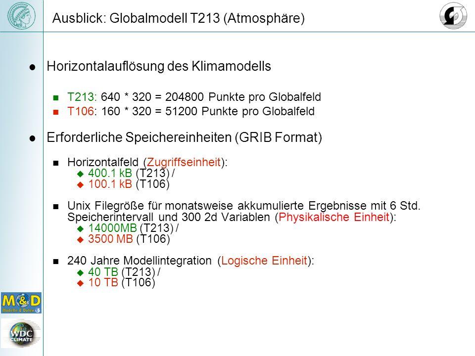 Ausblick: Globalmodell T213 (Atmosphäre)