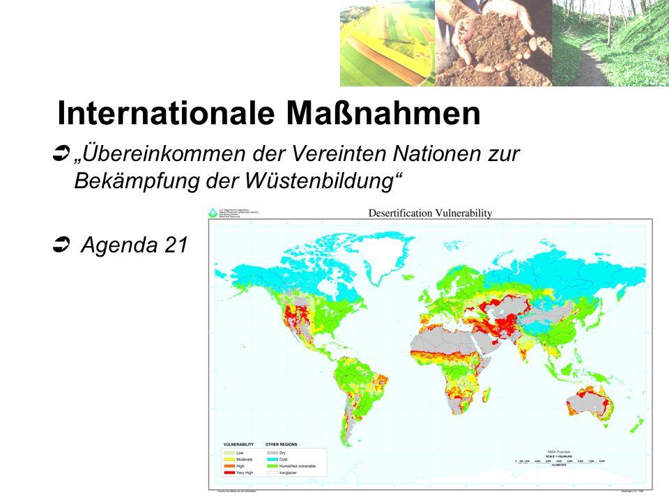 Internationale Maßnahmen