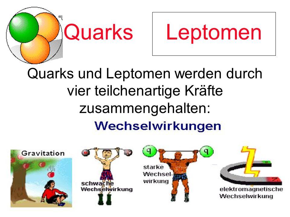 Quarks Leptomen Quarks und Leptomen werden durch