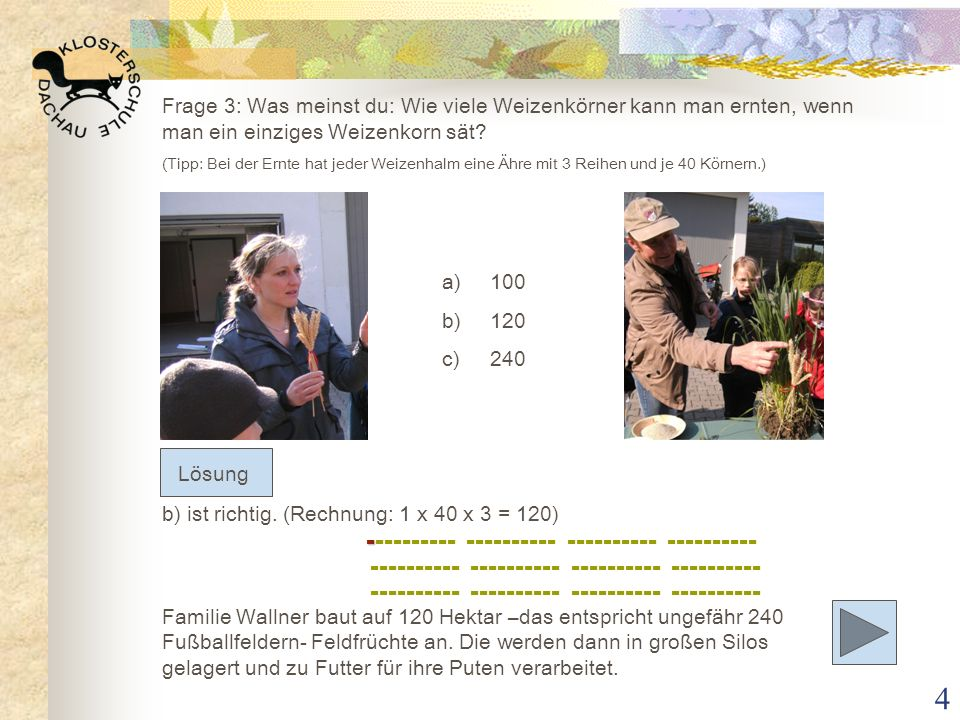 Frage 3: Was meinst du: Wie viele Weizenkörner kann man ernten, wenn man ein einziges Weizenkorn sät