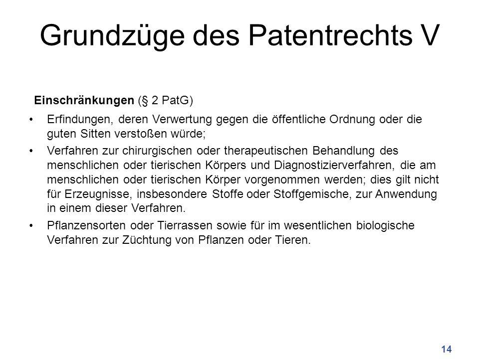 Grundzüge des Patentrechts V