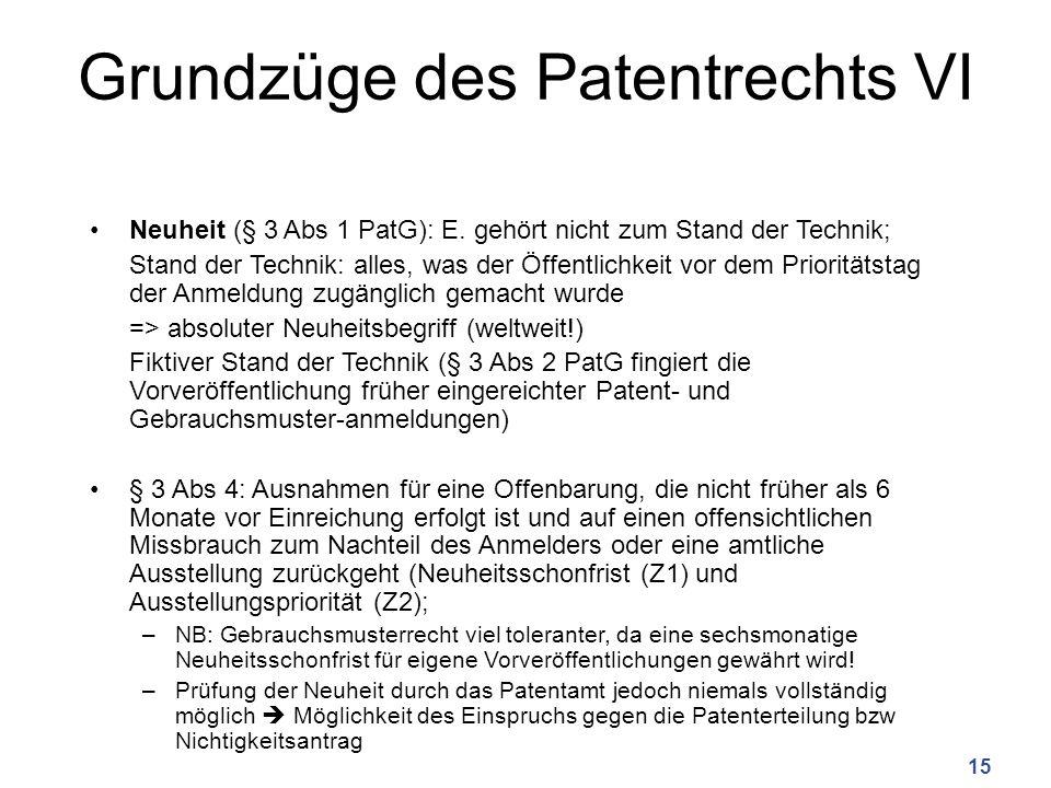 Grundzüge des Patentrechts VI