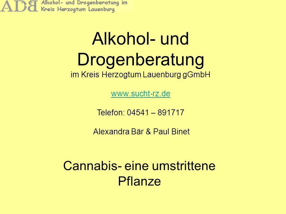 Cannabis- eine umstrittene Pflanze