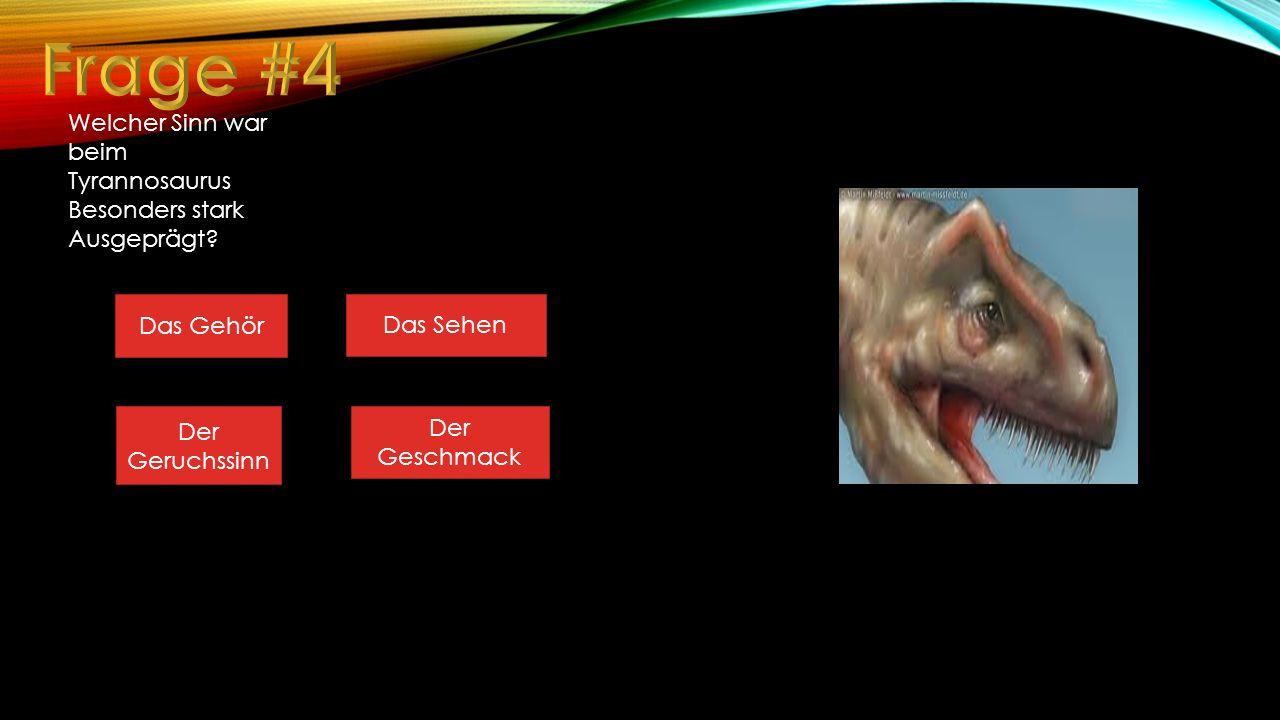 Frage #4 Welcher Sinn war beim Tyrannosaurus Besonders stark