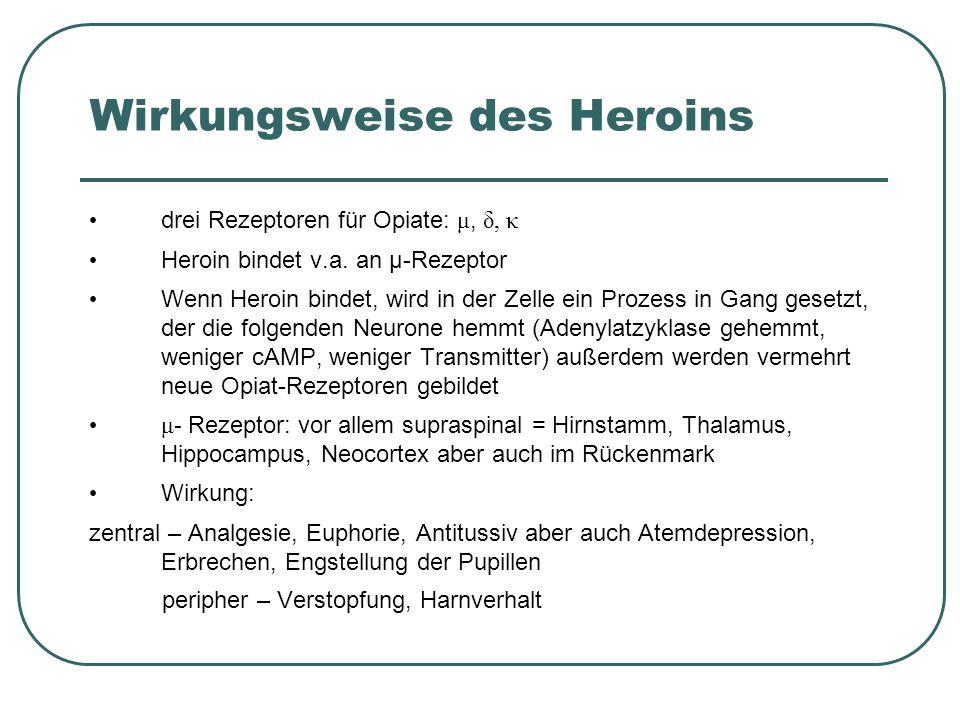 Wirkungsweise des Heroins