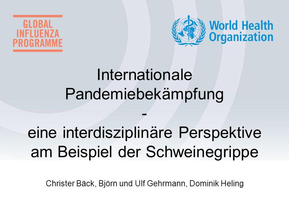 Internationale Pandemiebekämpfung - eine interdisziplinäre Perspektive am Beispiel der Schweinegrippe