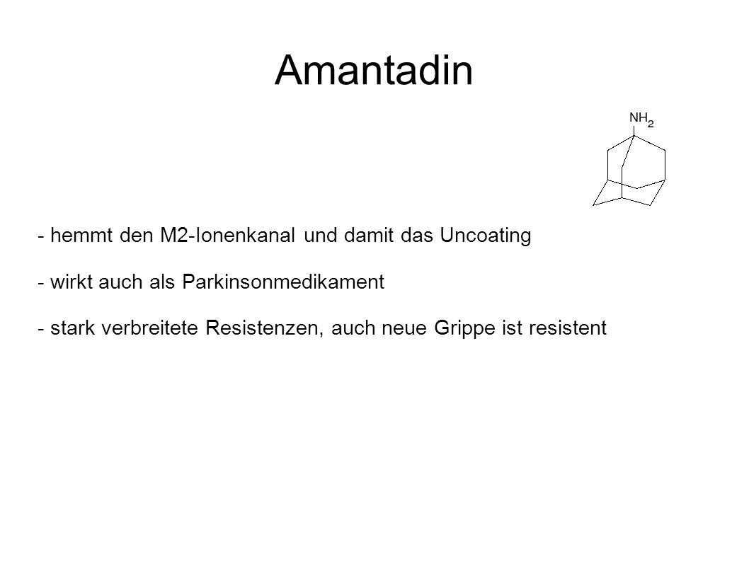 Amantadin - hemmt den M2-Ionenkanal und damit das Uncoating