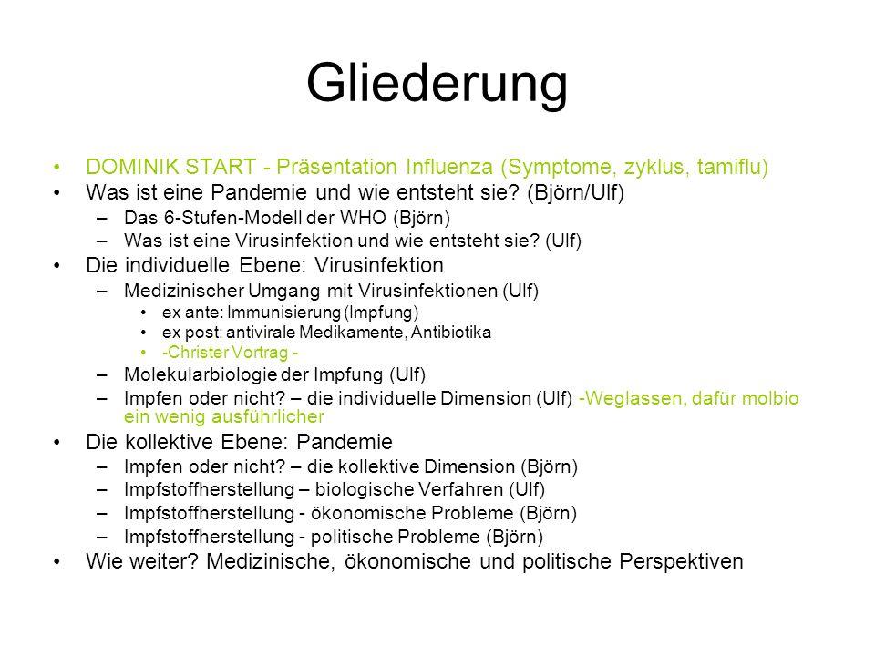 Gliederung DOMINIK START - Präsentation Influenza (Symptome, zyklus, tamiflu) Was ist eine Pandemie und wie entsteht sie (Björn/Ulf)