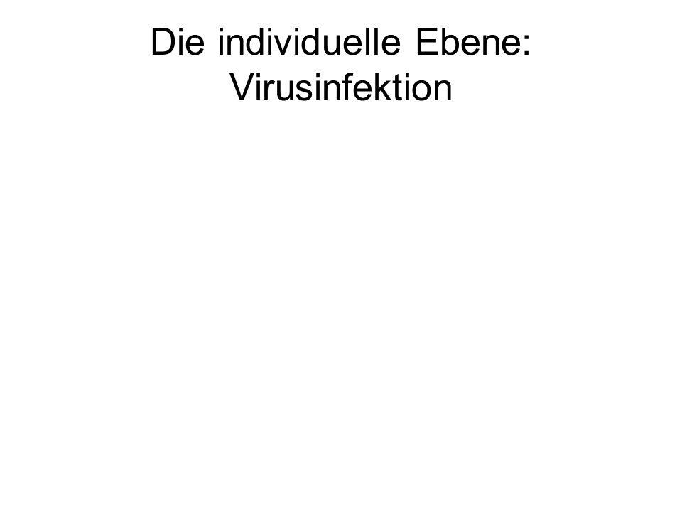 Die individuelle Ebene: Virusinfektion