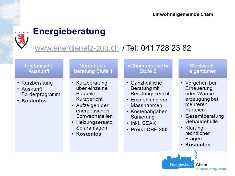 Energieberatung www.energienetz-zug.ch / Tel: 041 728 23 82