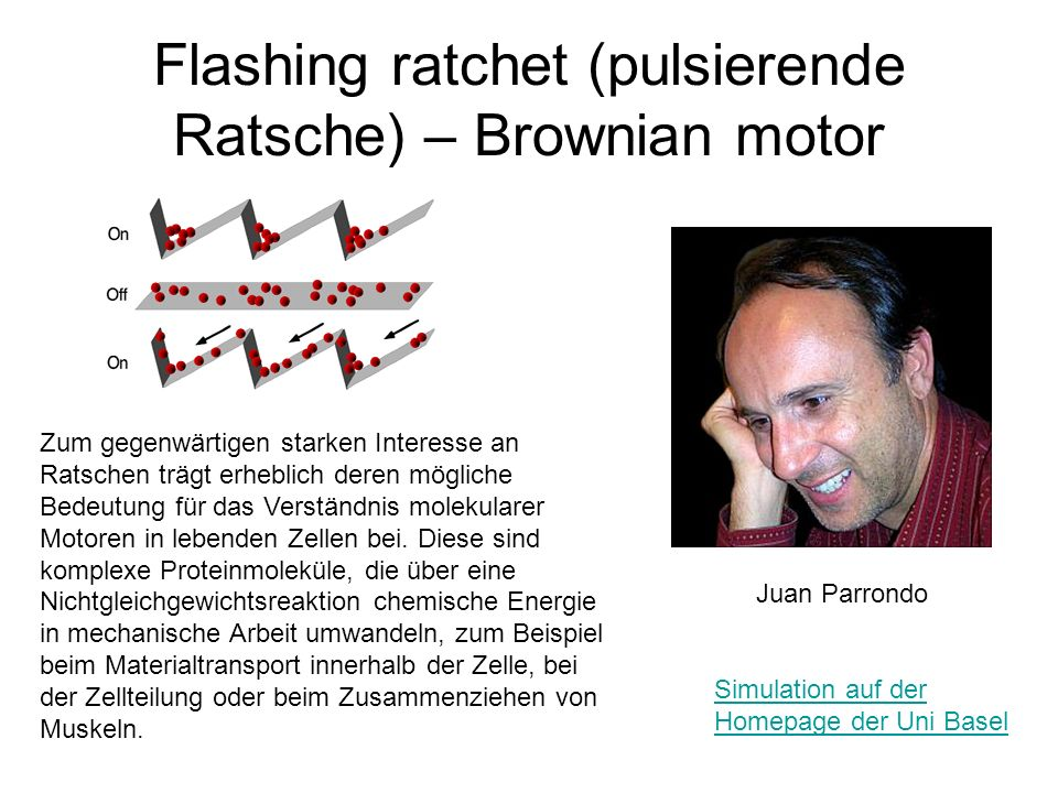 Flashing ratchet (pulsierende Ratsche) – Brownian motor
