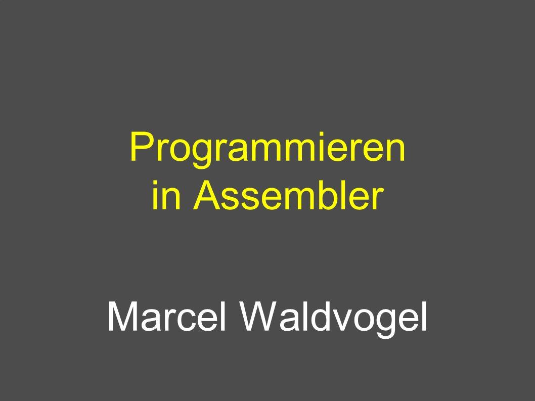 Programmieren in Assembler