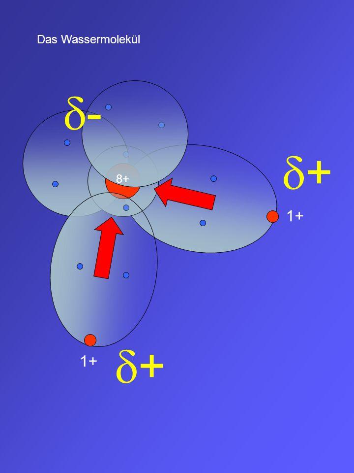 Das Wassermolekül d- d+ 8+ 1+ d+ 1+