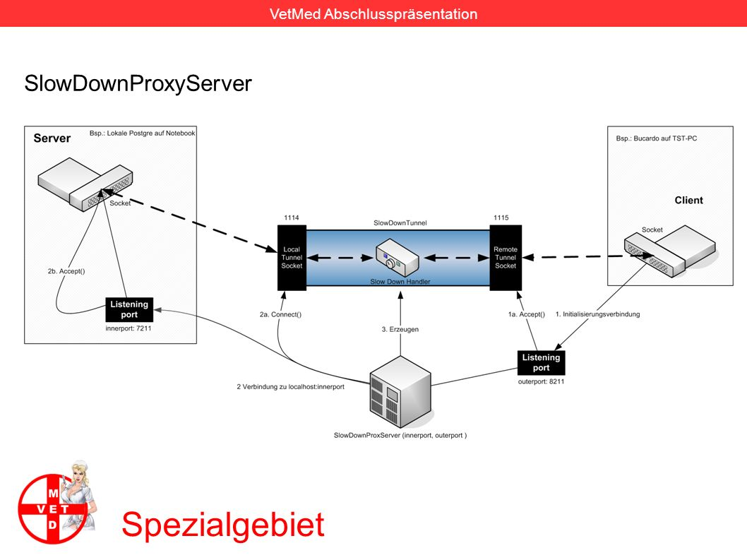 SlowDownProxyServer Spezialgebiet