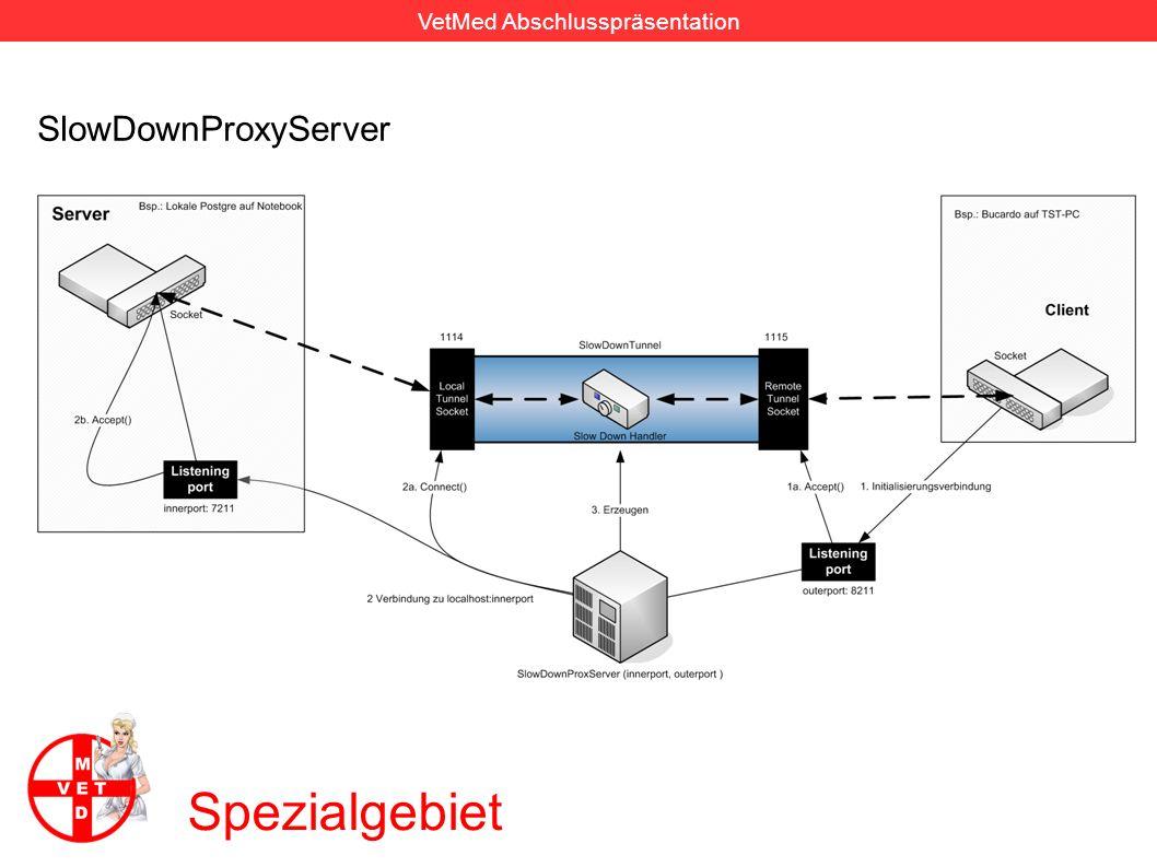 SlowDownProxyServer Spezialgebiet