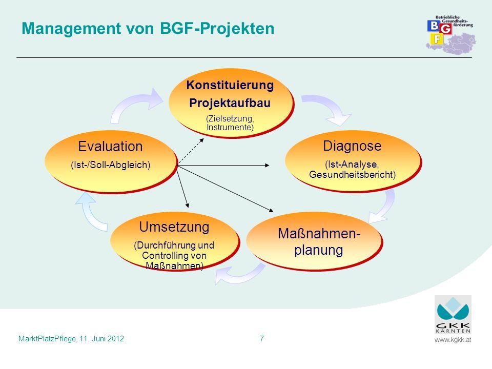 Management von BGF-Projekten