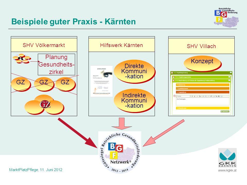 Beispiele guter Praxis - Kärnten