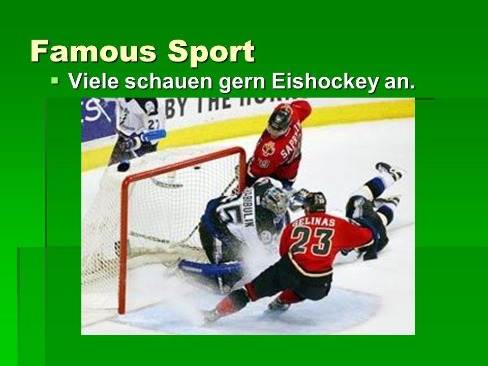 Famous Sport Viele schauen gern Eishockey an.