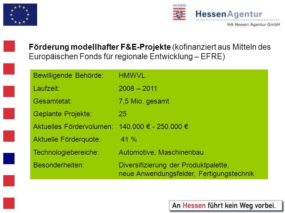 Förderung modellhafter F&E-Projekte (kofinanziert aus Mitteln des Europäischen Fonds für regionale Entwicklung – EFRE)