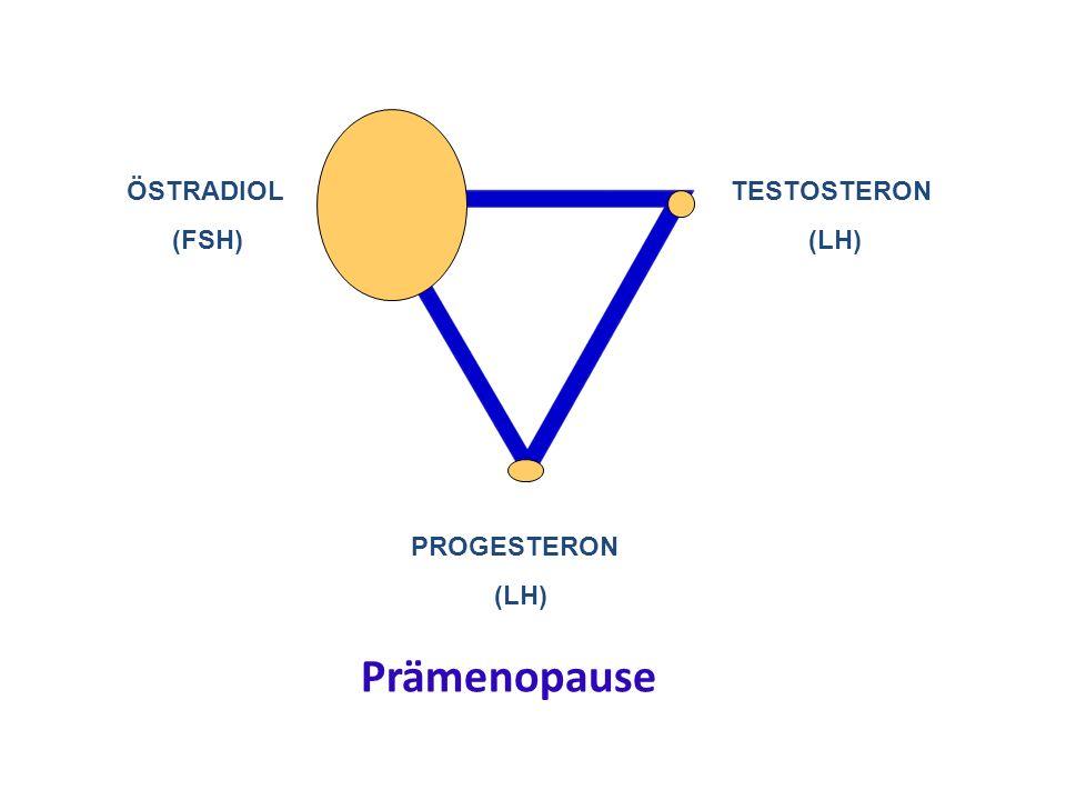 ÖSTRADIOL (FSH) TESTOSTERON (LH) PROGESTERON (LH) Prämenopause