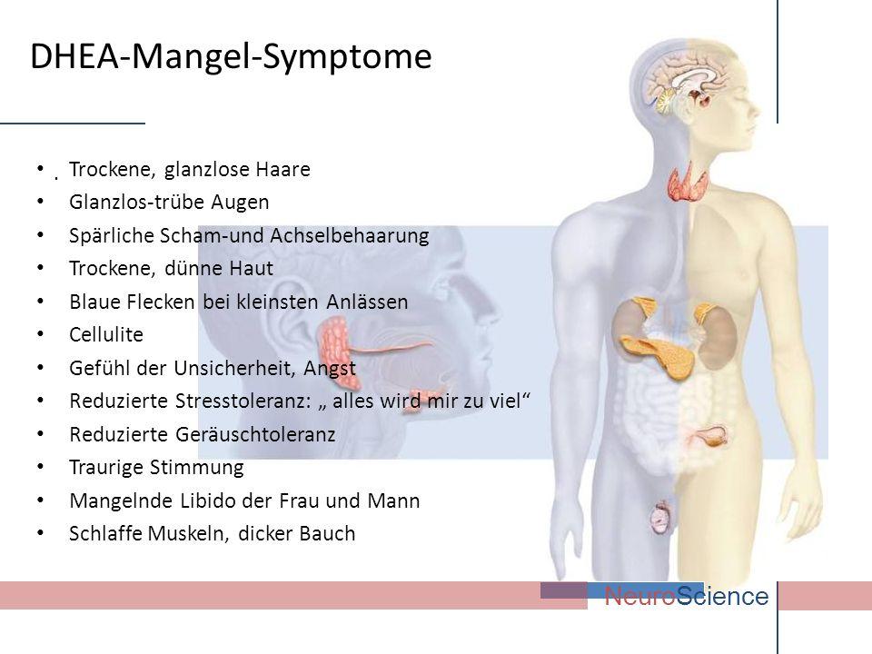 DHEA-Mangel-Symptome