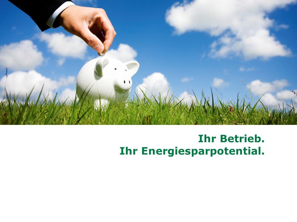 Ihr Betrieb. Ihr Energiesparpotential.