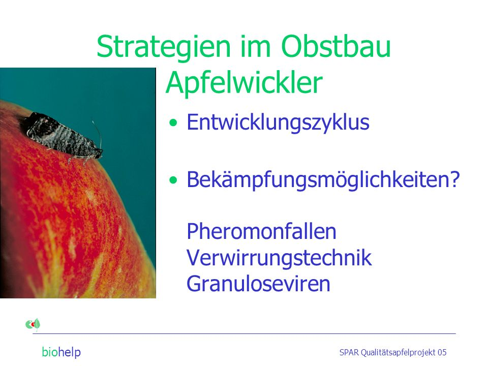 Strategien im Obstbau Apfelwickler