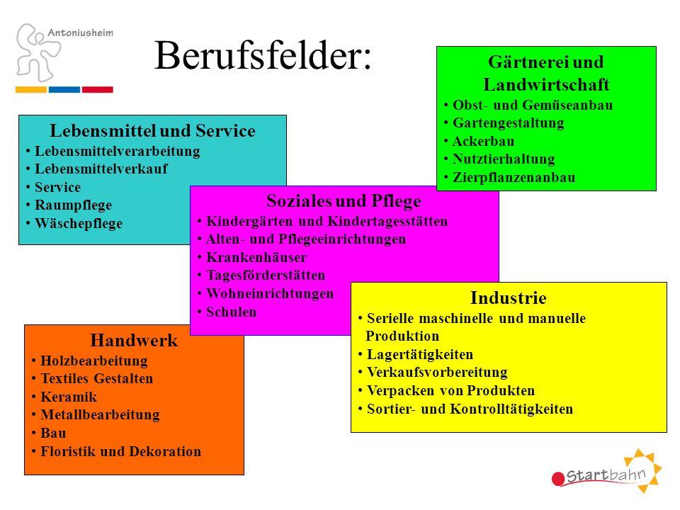 Berufsfelder: Gärtnerei und Landwirtschaft Lebensmittel und Service