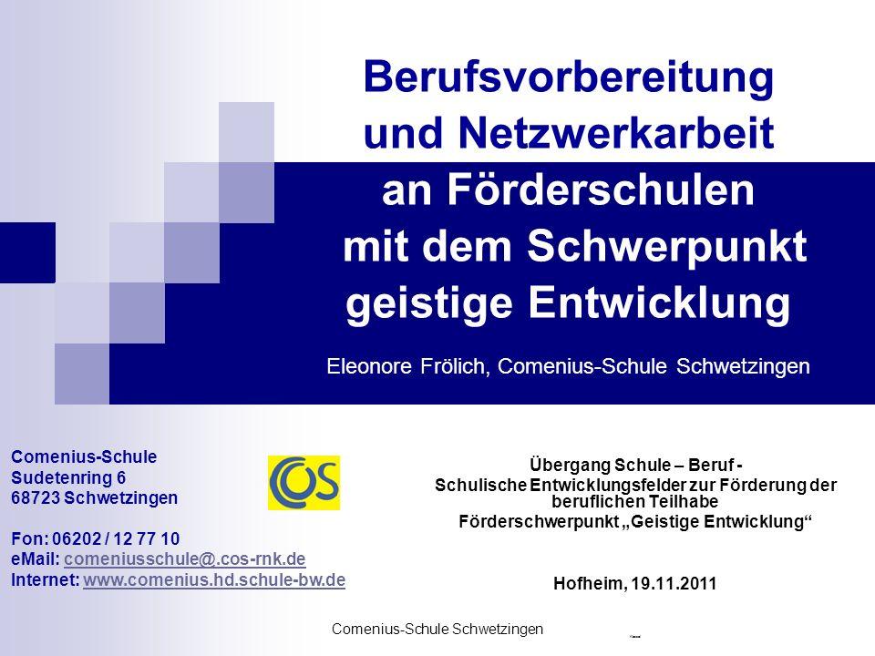 Berufsvorbereitung und Netzwerkarbeit an Förderschulen mit dem Schwerpunkt geistige Entwicklung Eleonore Frölich, Comenius-Schule Schwetzingen