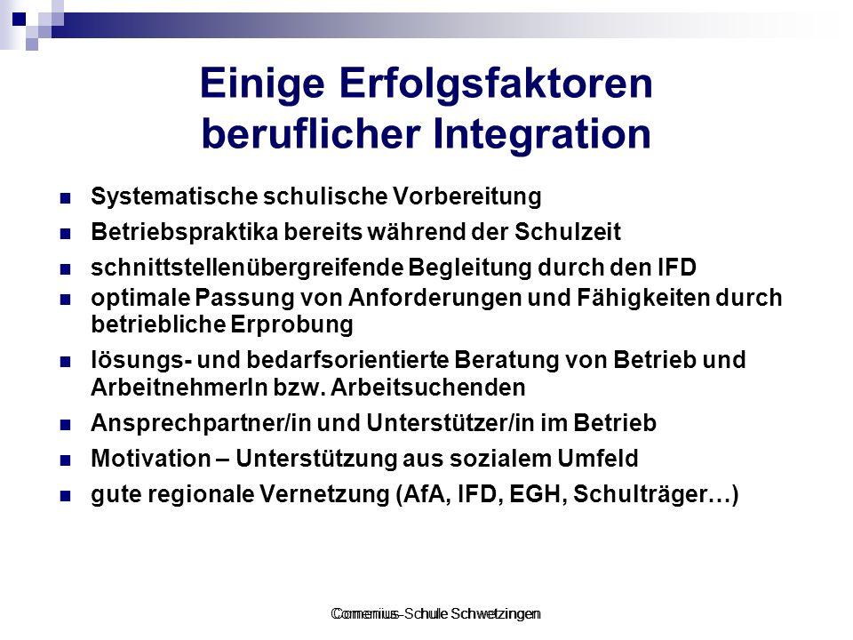 Einige Erfolgsfaktoren beruflicher Integration