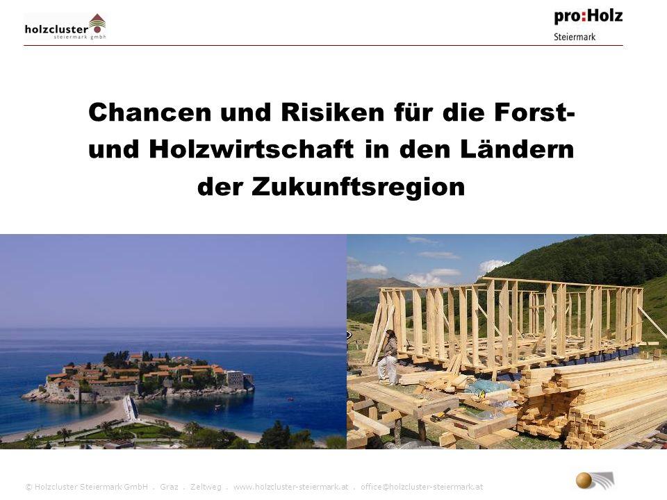Chancen und Risiken für die Forst- und Holzwirtschaft in den Ländern