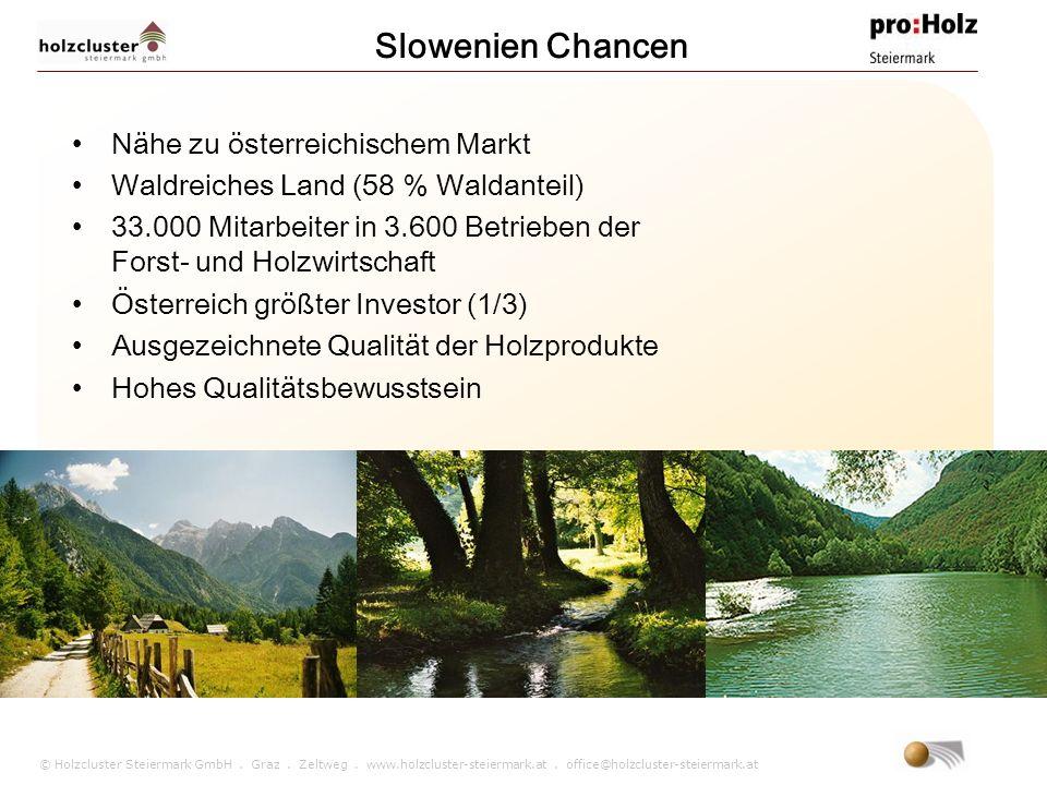 Slowenien Chancen Nähe zu österreichischem Markt
