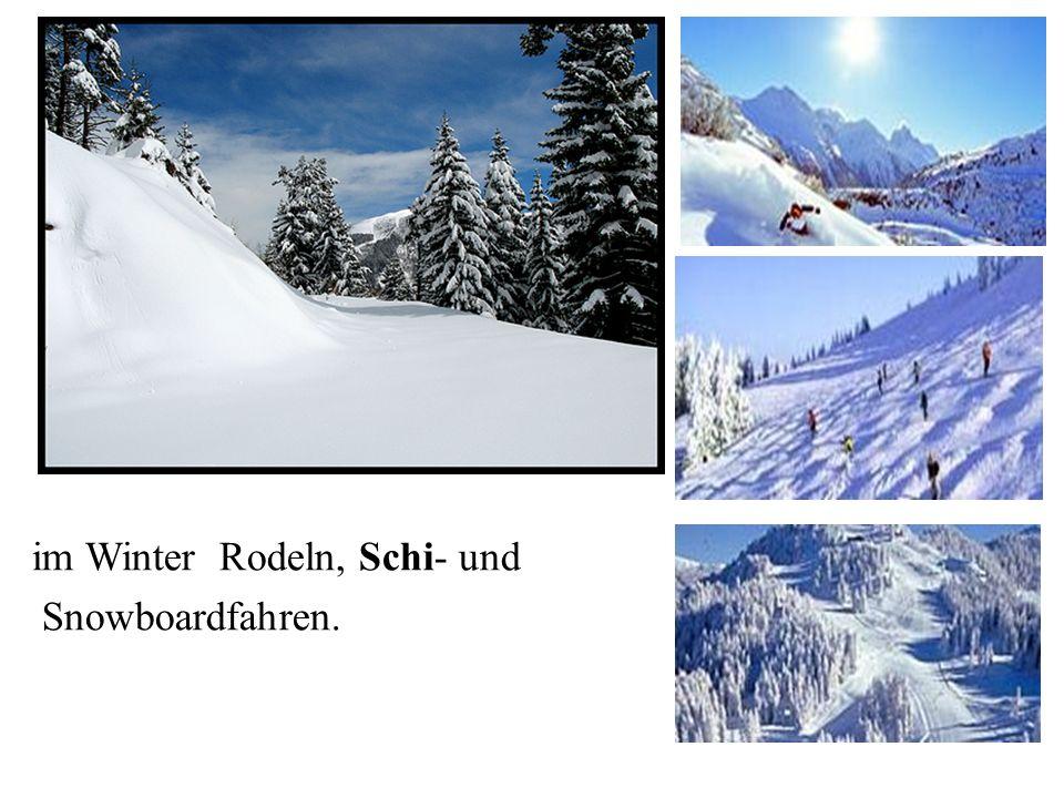 im Winter Rodeln, Schi- und