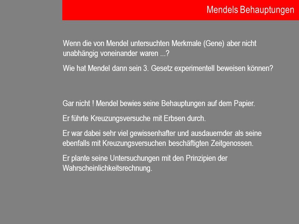 Mendels Behauptungen Wenn die von Mendel untersuchten Merkmale (Gene) aber nicht unabhängig voneinander waren ...