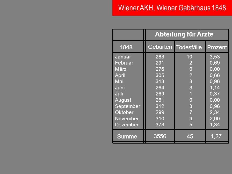 Wiener AKH, Wiener Gebärhaus 1848