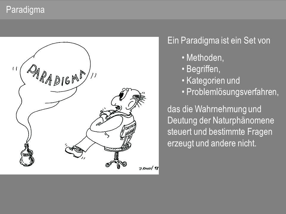 Paradigma Ein Paradigma ist ein Set von. Methoden, Begriffen, Kategorien und. Problemlösungsverfahren,