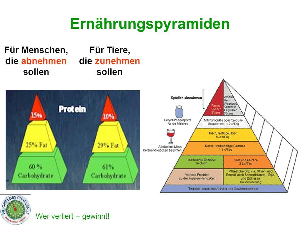 Ernährungspyramiden Für Menschen, die abnehmen sollen Für Tiere,