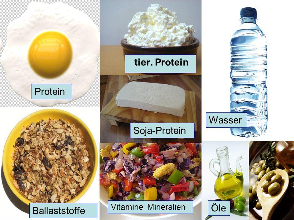 tier. Protein Protein Wasser Soja-Protein Öle Ballaststoffe