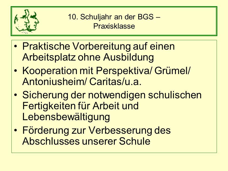 10. Schuljahr an der BGS – Praxisklasse