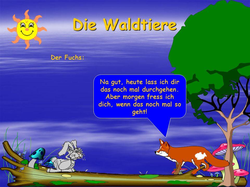 Die Waldtiere Der Fuchs: