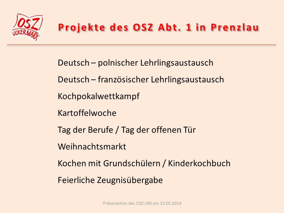 Projekte des OSZ Abt. 1 in Prenzlau