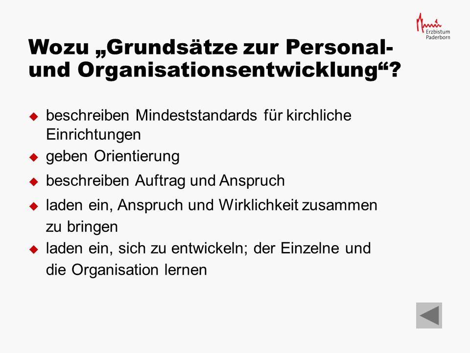 """Wozu """"Grundsätze zur Personal- und Organisationsentwicklung"""