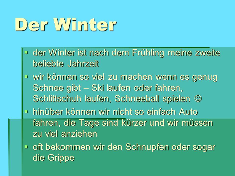 Der Winter der Winter ist nach dem Frühling meine zweite beliebte Jahrzeit.