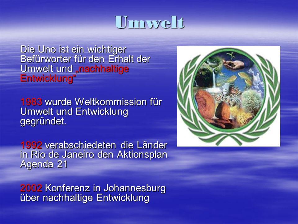 """Umwelt Die Uno ist ein wichtiger Befürworter für den Erhalt der Umwelt und """"nachhaltige Entwicklung"""