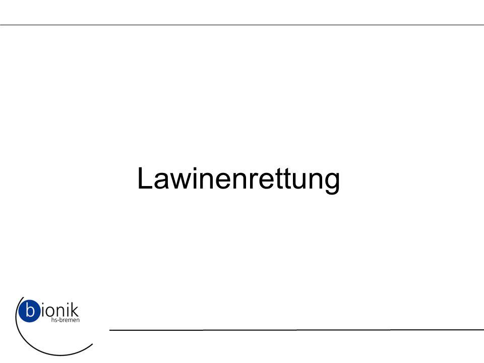 Lawinenrettung