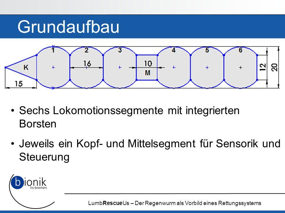 LumbRescueUs – Der Regenwurm als Vorbild eines Rettungssystems
