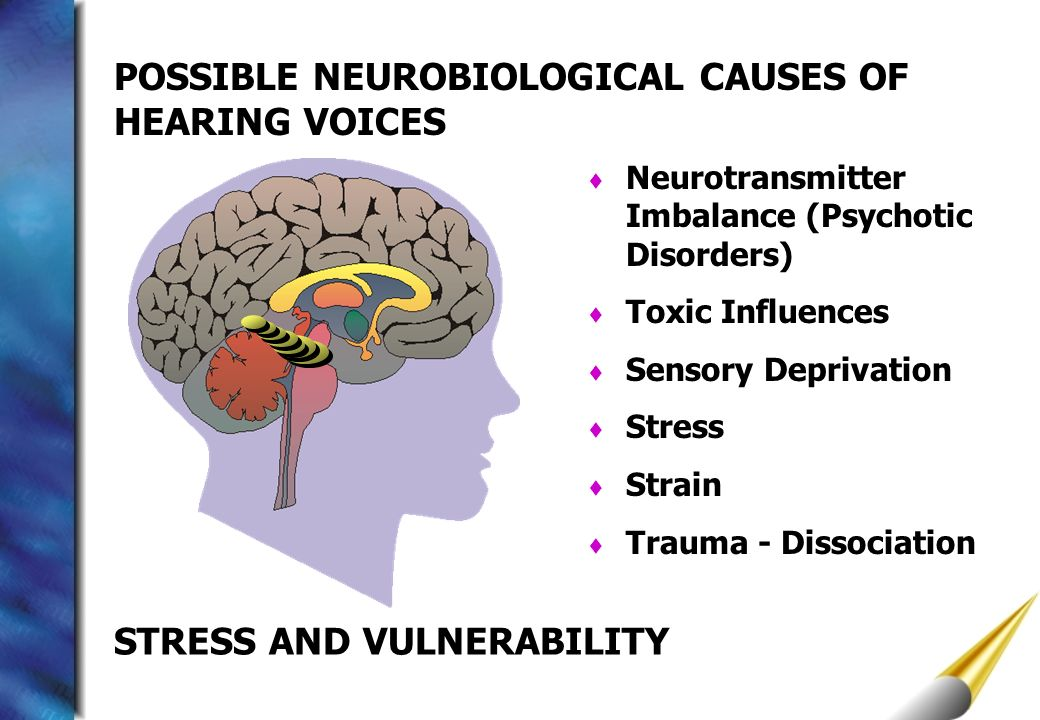 POSSIBLE NEUROBIOLOGICAL CAUSES OF HEARING VOICES