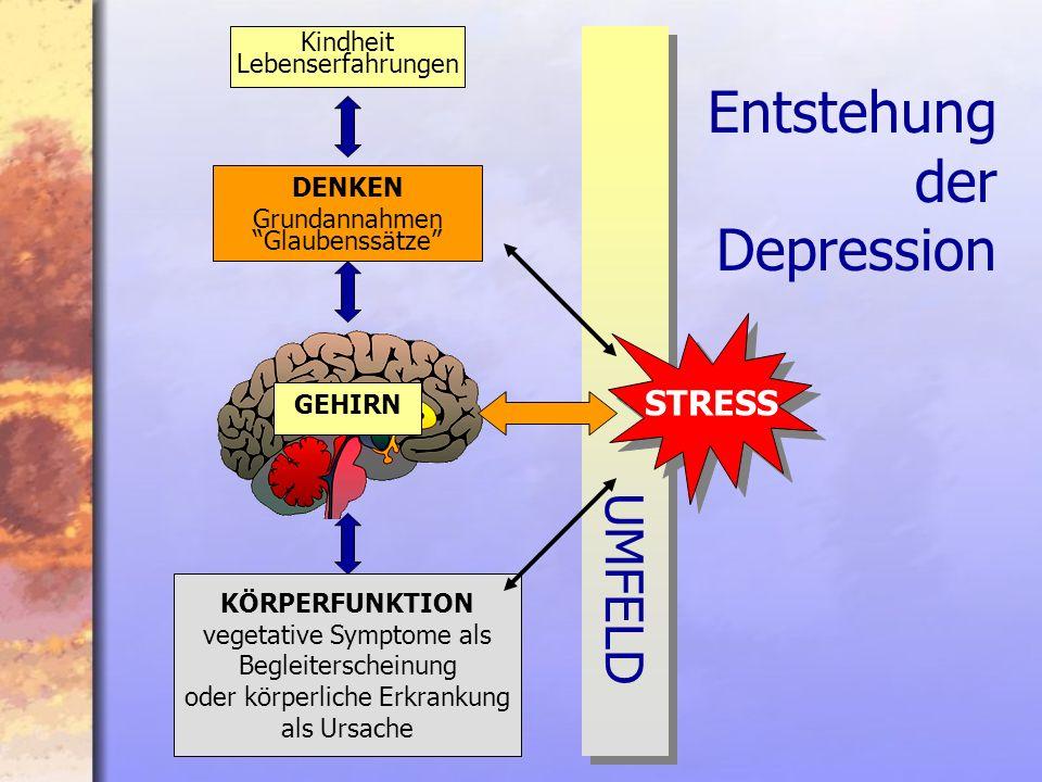 Entstehungder Depression